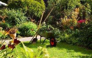 garden-13-maintenance